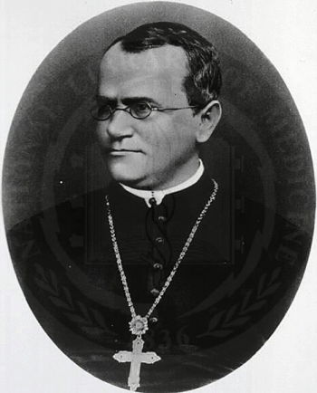 a biography of gregor mendel an augustinian monk This is a such wonderful a biography of gregor mendel,  documentation to illuminate the life and work of the moravian augustinian monk, gregor johann mendel,.