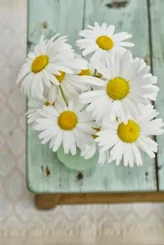 mawar pink bunga mawar putih anggrek bunga kertas