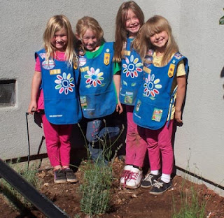 Four girl scouts in their newly-planted lavender garden at GDB.