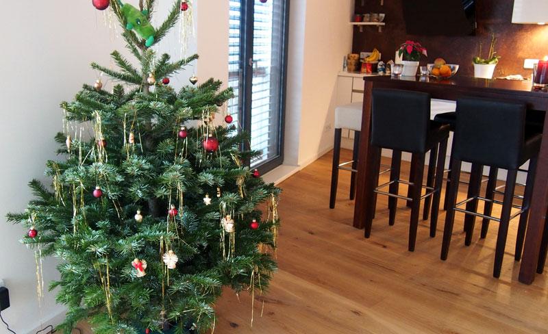 Treenipäiväkirja ja haaste jouluun