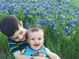 My boys in the bluebonnets