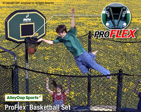 AlleyOop Sports ProFlex Basketball Set