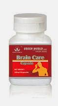 jual suplemen kesehatan otak