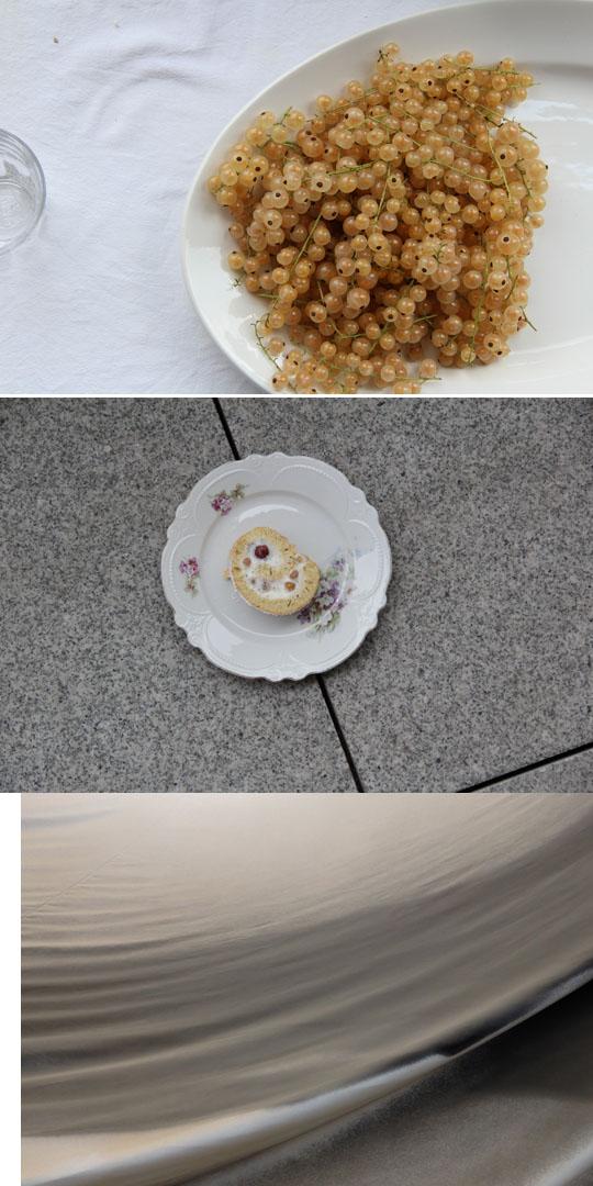 Biskuitrolle mit Joghurtsahne, Mohn und Beeren