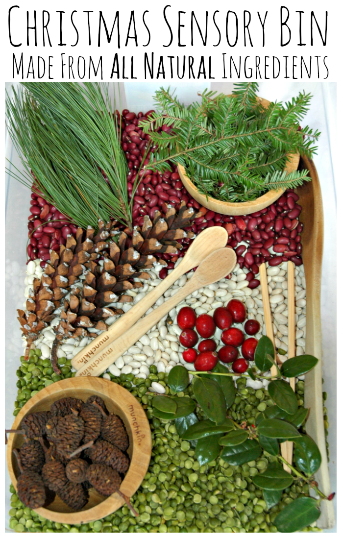 Christmas sensory bin made from all natural materials. Great fun for kids!