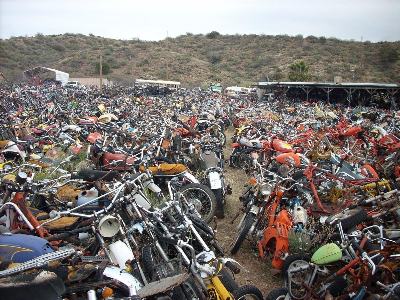 Mini Bike Junkyard : Moto n motorcycle graveyard rye az