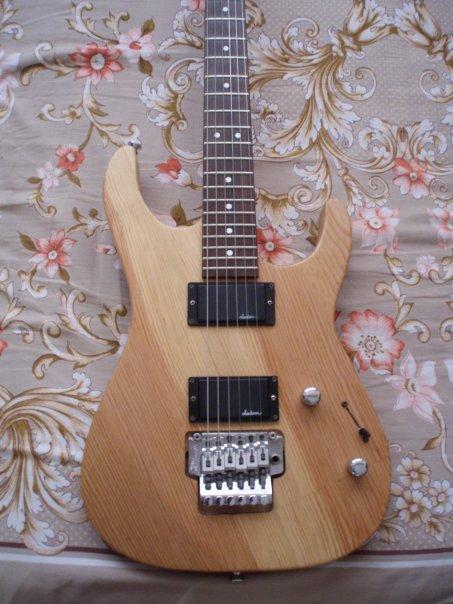 guitar world  homemade guitars