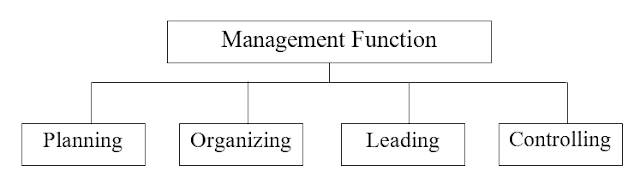 what is management function