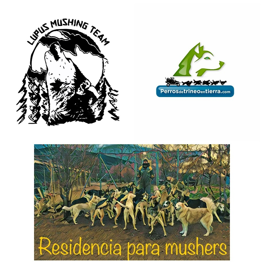 "LUPUS MUSHING TEAM  "" Espiritu de Lobos """