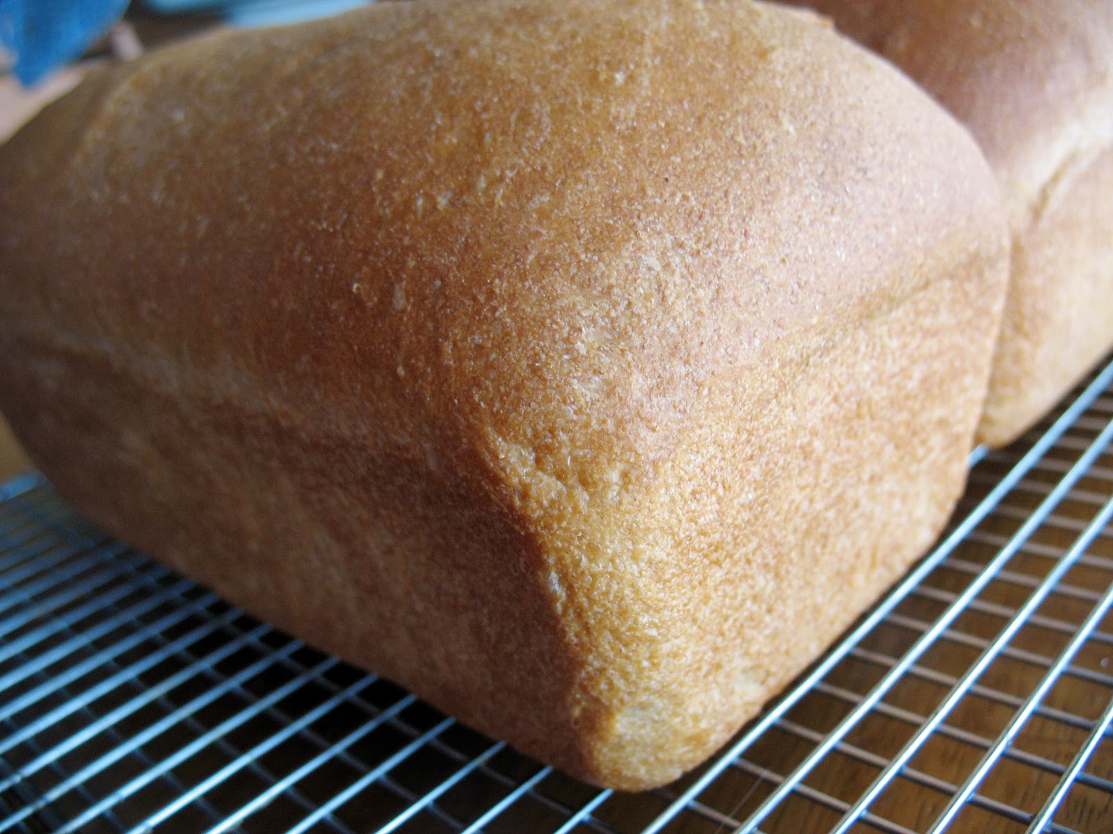 Honey Wheat Bread Recipe — Dishmaps