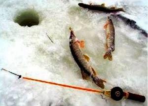 Ловля щуки зимой на балансиры