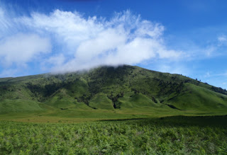 Savana Gunung Bromo