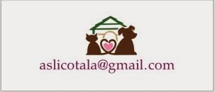 Info & Mail