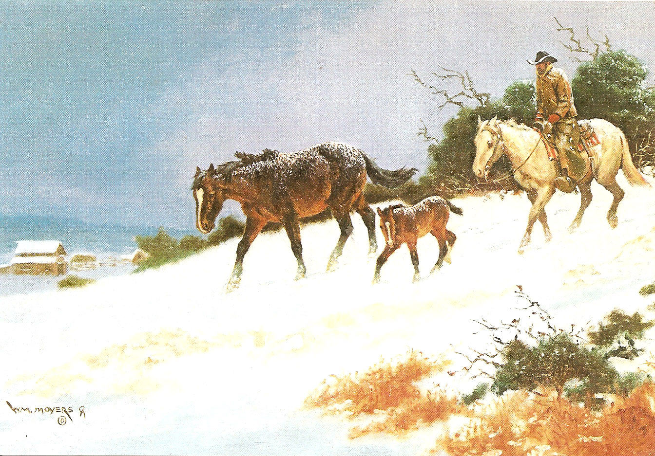 PowerOfBabel: Nanny\'s Christmas Cards: Texas Xmas