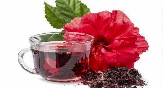 فوائد الكركديه, الكركديه, فوائد الكركديه الصحية, الصحية و الغذائية, الصحة العامة, صحة, hibiscus plant,
