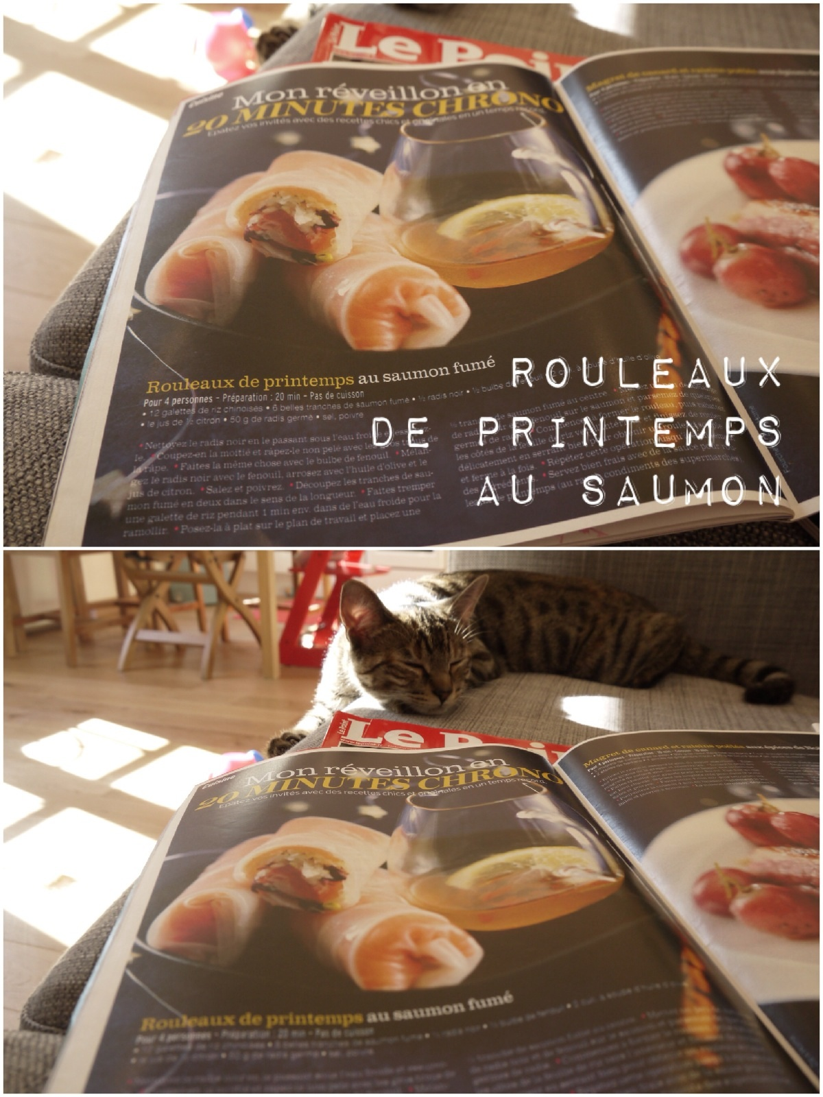 RECETTE ROULEAUX DE PRINTEMPS