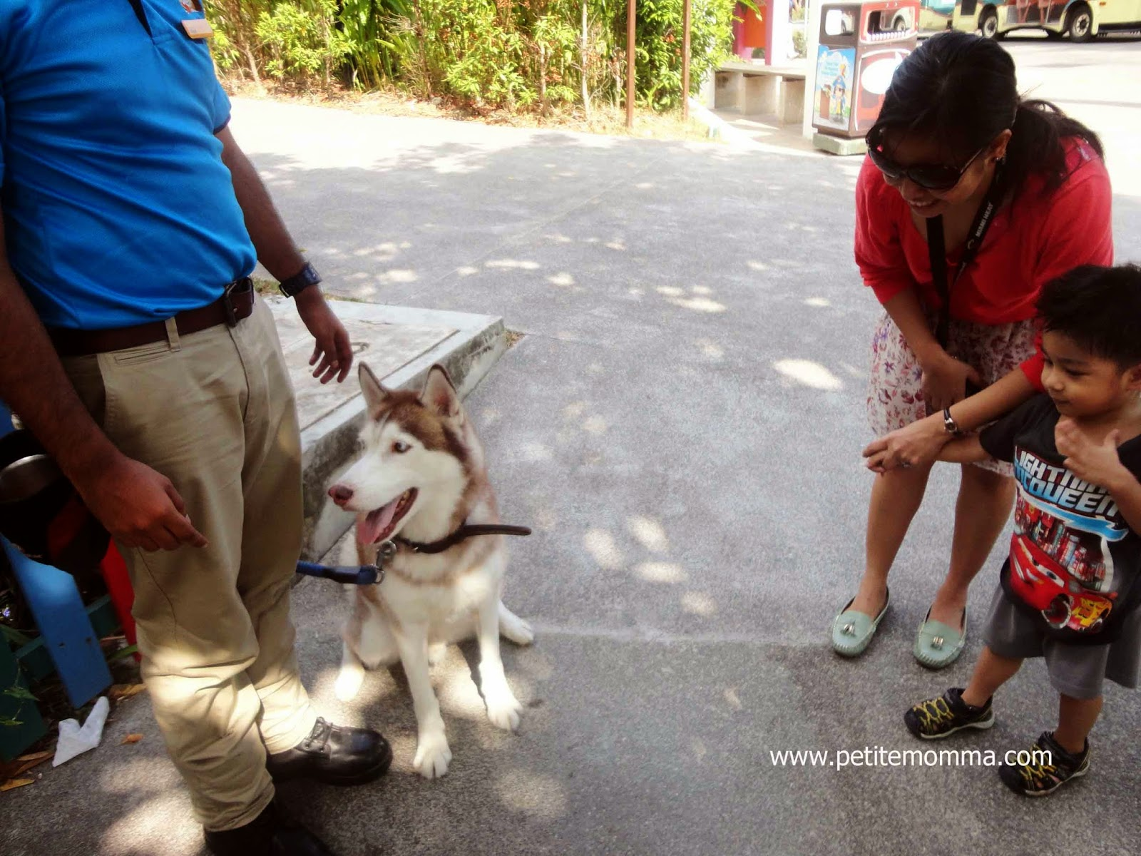 Meet the animals at Sentosa