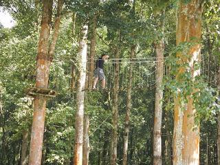 Treetop Adventure Kebun Raya Bedugul