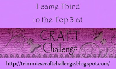 WINNER #3 at TRIMMIES CRAFT CHALLENGE.