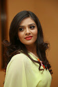 Sri mukhi Latest glam pics-thumbnail-14