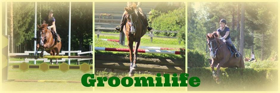 groomi life