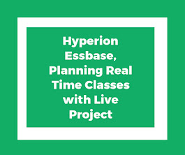 Hyperion Real Time classes with Live Project