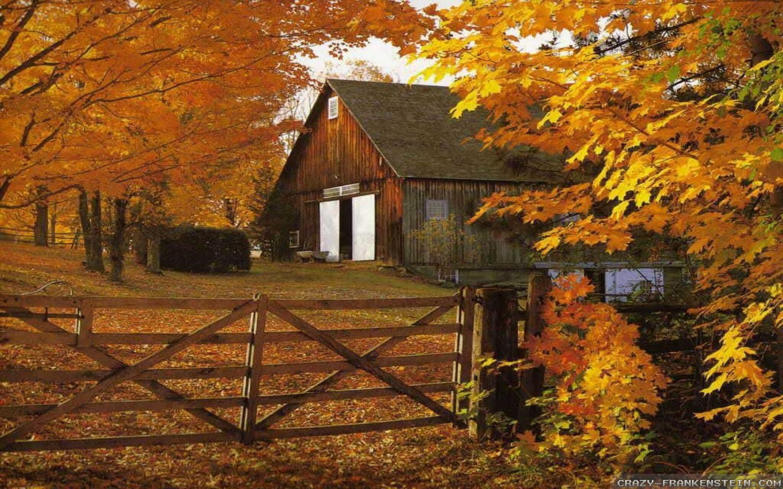 http://4.bp.blogspot.com/-td30SFi_x3U/Tj9cwfRs7dI/AAAAAAAAADQ/Kf-x6I_jMi8/s1600/autumn-barn-in-fall-leaves-wallpapers-1920x1200.jpg