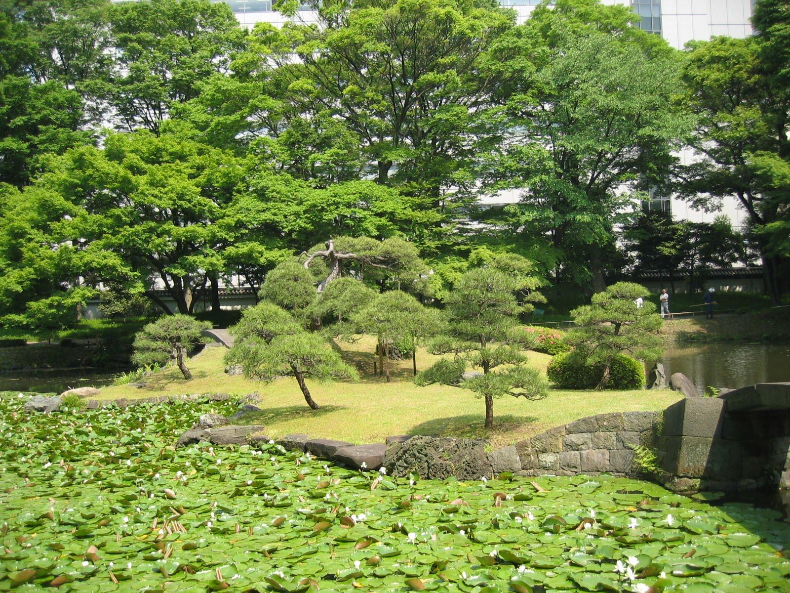 Matsu bonsai le mus e d 39 estampe et le jardin de for Le jardin korakuen