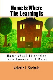 Home Is Where The Learning Is