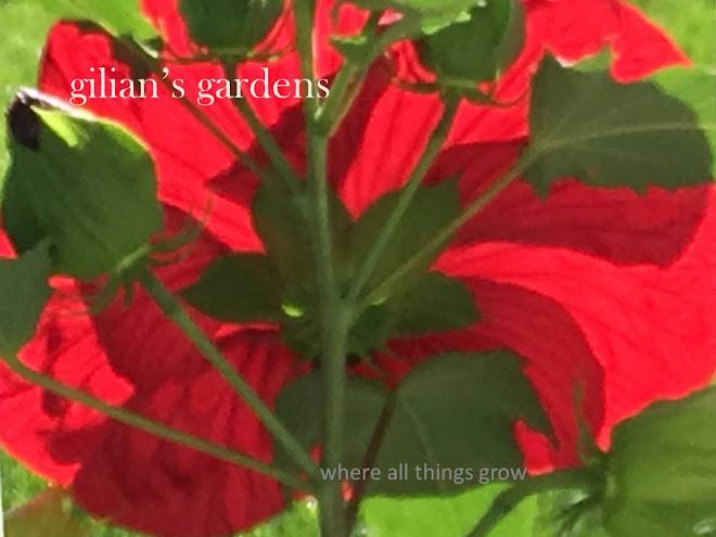 gilian's gardens