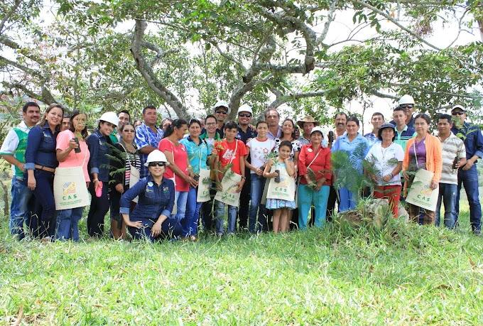 Artesanos de Barichara sembrarán 600 árboles como compensación ambiental