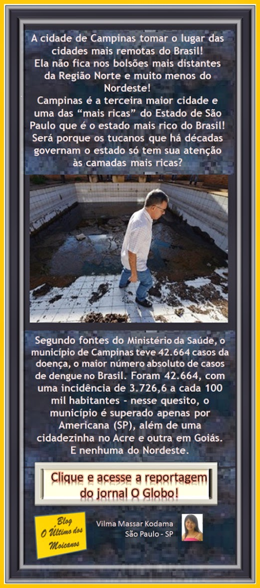 http://g1.globo.com/sp/campinas-regiao/noticia/2015/01/campinas-foi-cidade-com-mais-casos-de-dengue-em-2014-aponta-governo.html