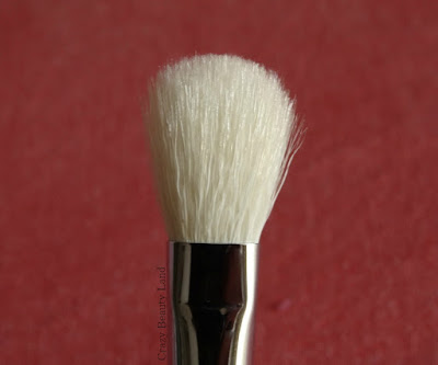 Zoeva 227 Luxe Soft Definer Brush Review Price Availability in India