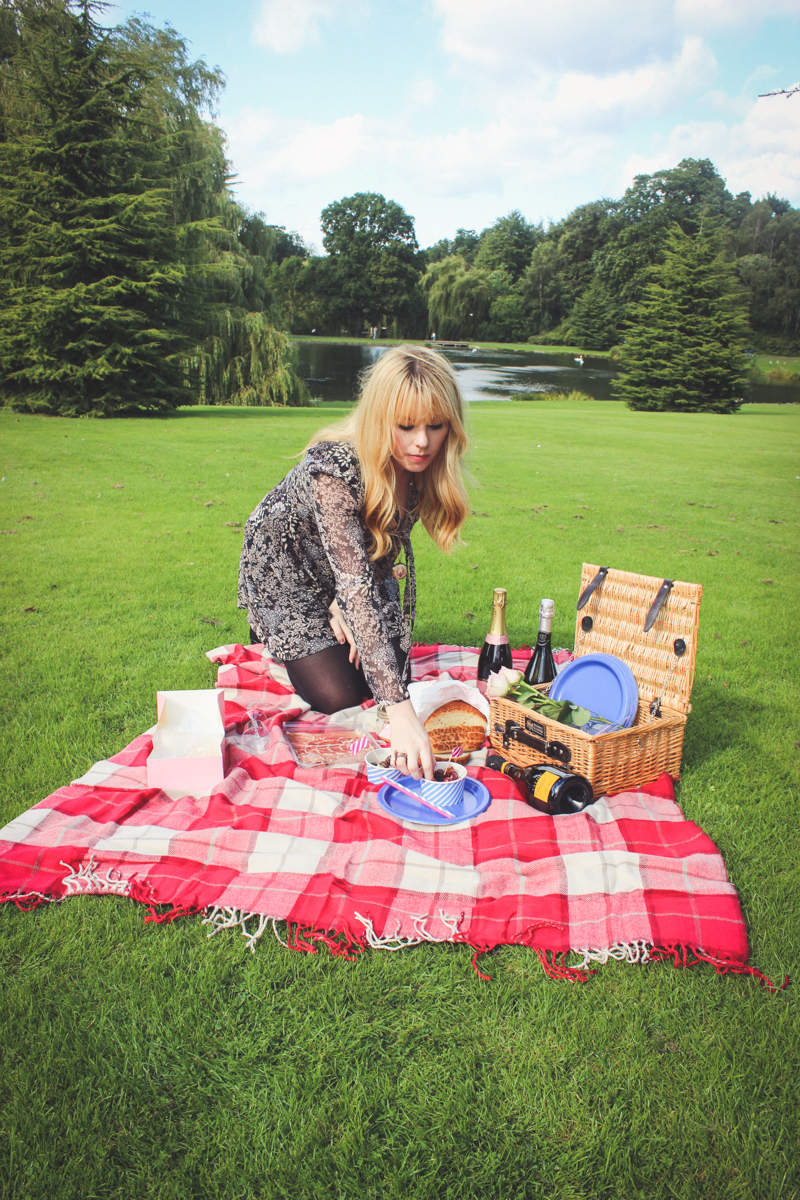 Summer Time Picnic Ideas