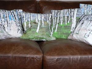 Silver Birch Cushions