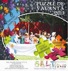 Puzzle de vacanță - 2013