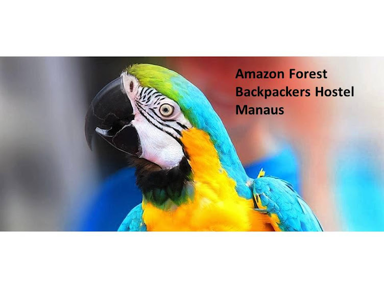 AMAZON FOREST HOSTEL