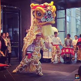 The Peninsula Hotel began their Chinese New Year celebrations with their Lion Dance!