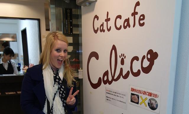 Calico Cat Café, Tokyo