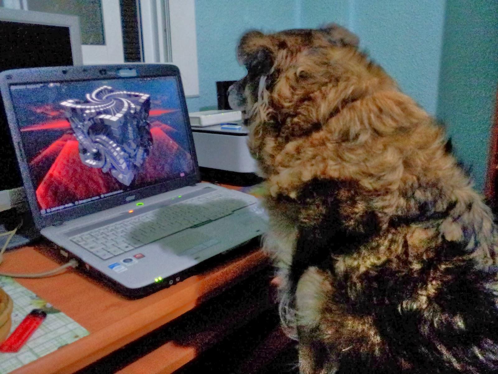 Aprendiendo informática con y sobre Ubuntu