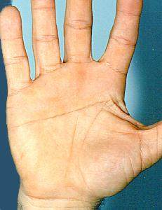 Heart Line and Head Line Fused Together Palmistry | INDIAN PALM ...