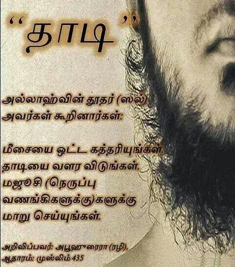 Image result for தாடி - ஓர் ஆய்வு
