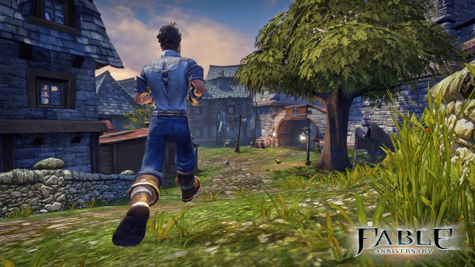 Fable Anniversary gameplay