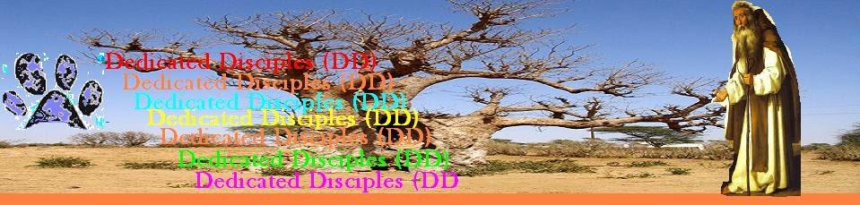 Dedicated Disciple