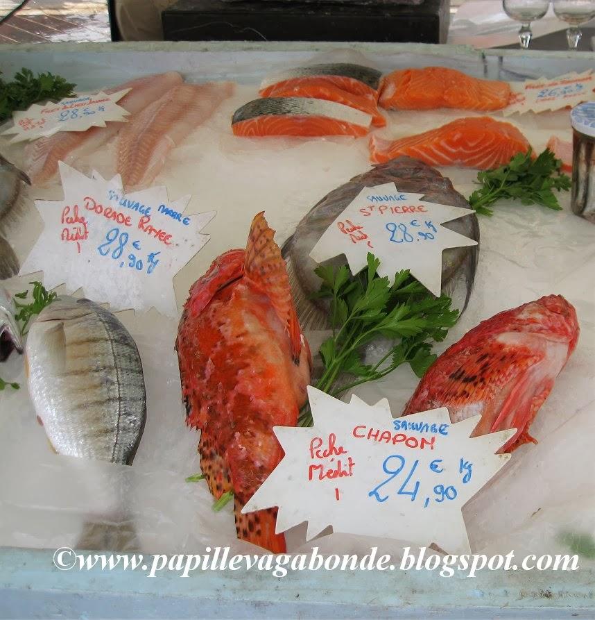 Papille vagabonde il salmone il pesce pi inquinato del for Pesci da laghetto mangia zanzare