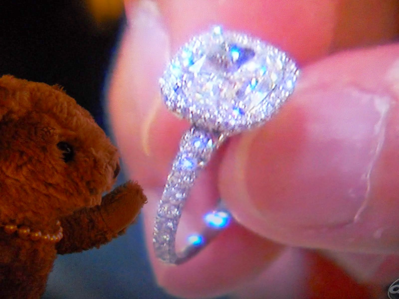 Engagement Ring : Engagement Ring In Fiji 50