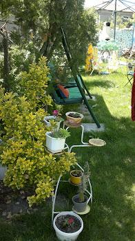 Градината - Снимка