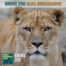 Bronx Zoo Blog Ambassador!