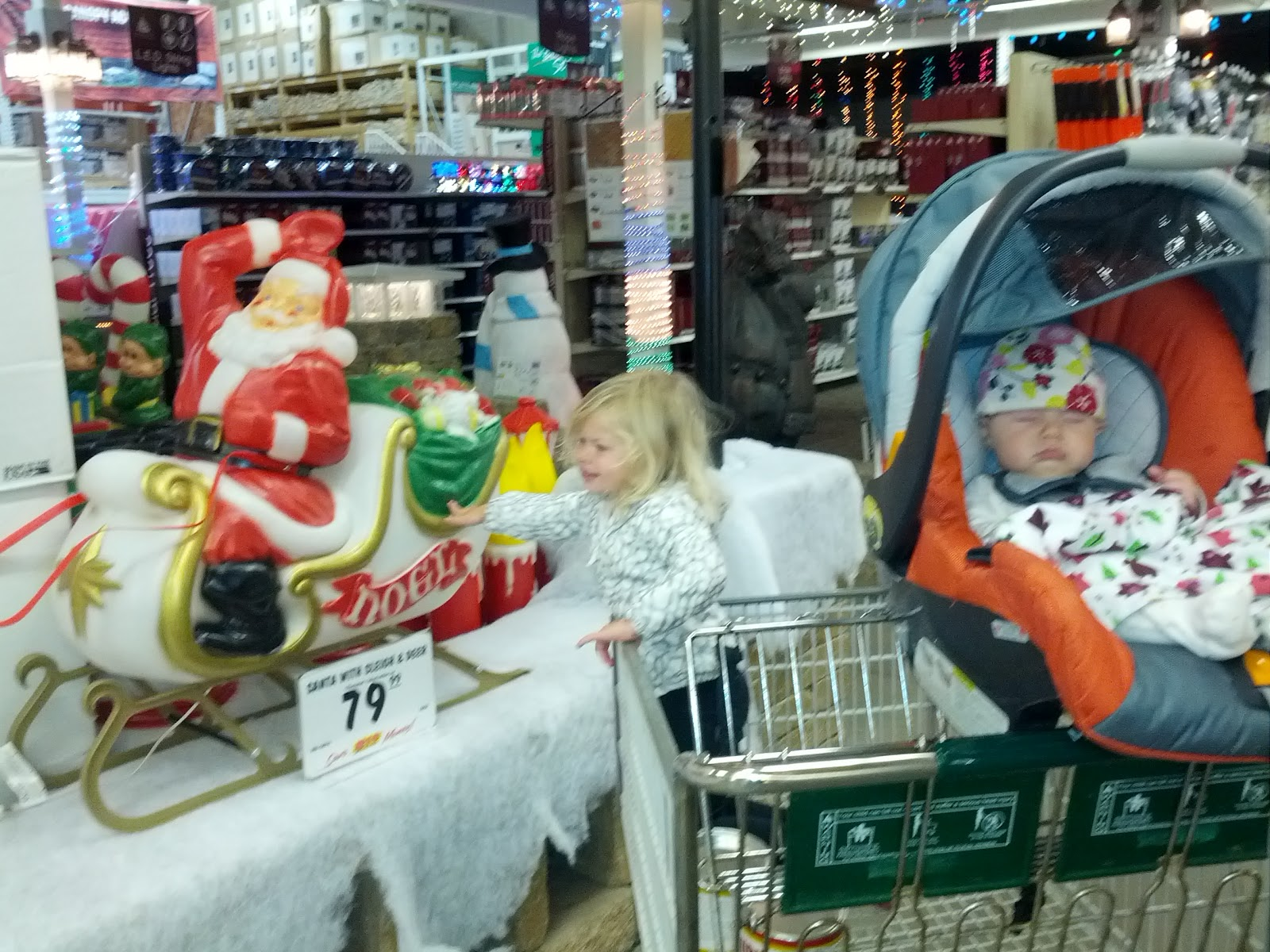 menards enchanted forest christmas display set up 2012 - Menards Halloween Decorations