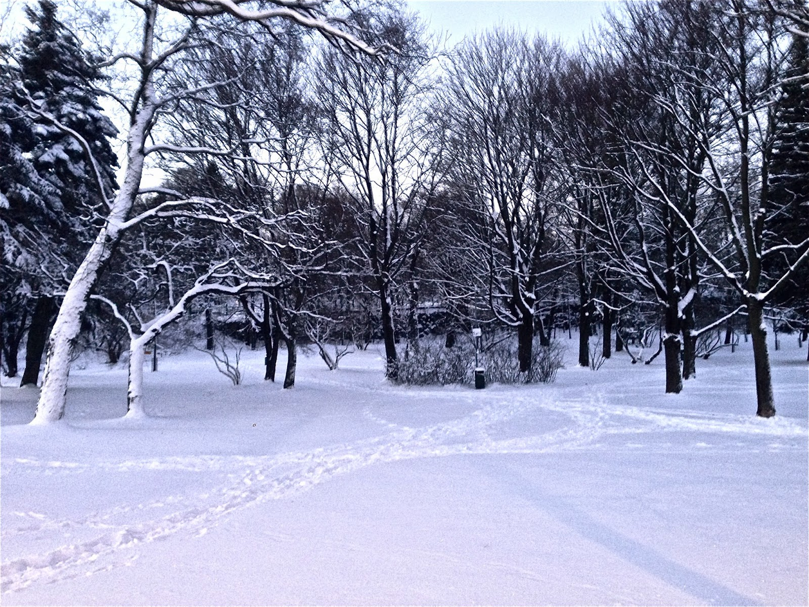Snow, Paths, Helsinki, Arabia